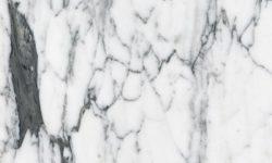 marble-arabescato-carrara